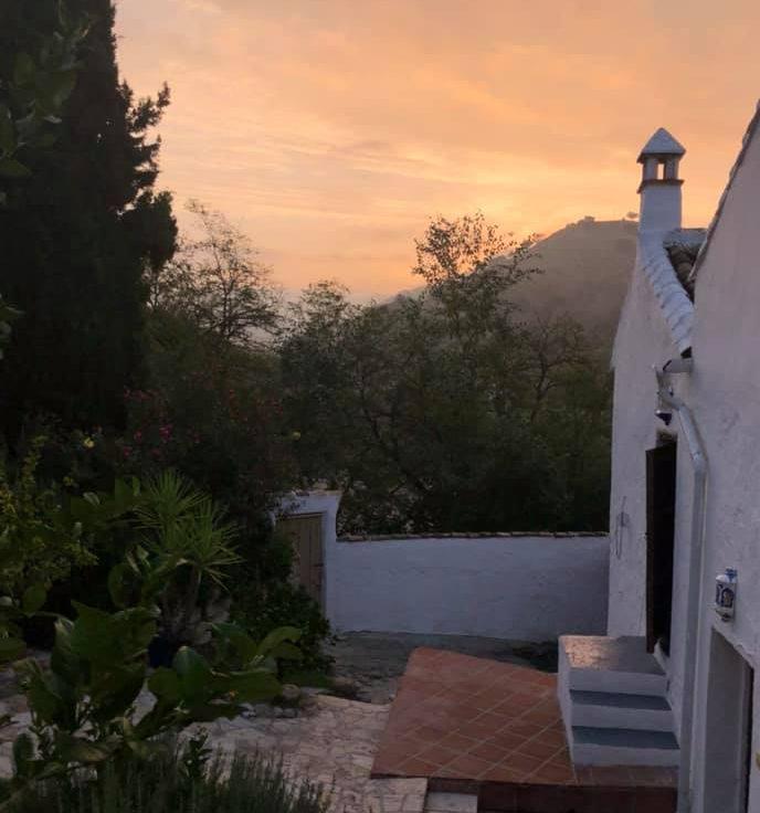 El Molino evening
